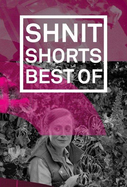 Shnit: Best-2019. Игровая программа