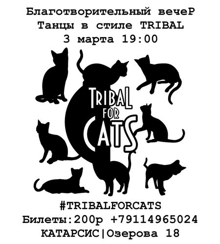 Tribal for cats