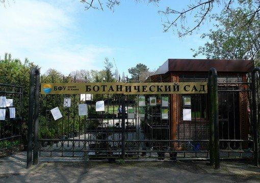 Ботанический сад БФУ имени И. Канта