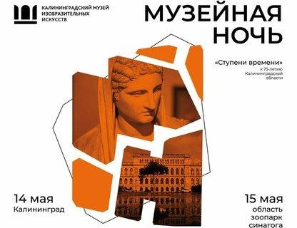 «Музейная ночь» в Музее изобразительных искусств