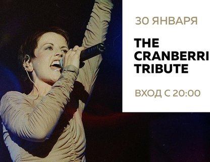 Клубный концерт The Cranberries Tribute Band