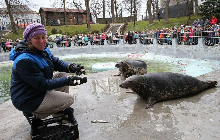 Фото: Игорь Зарембо, предоставлено зоопарком