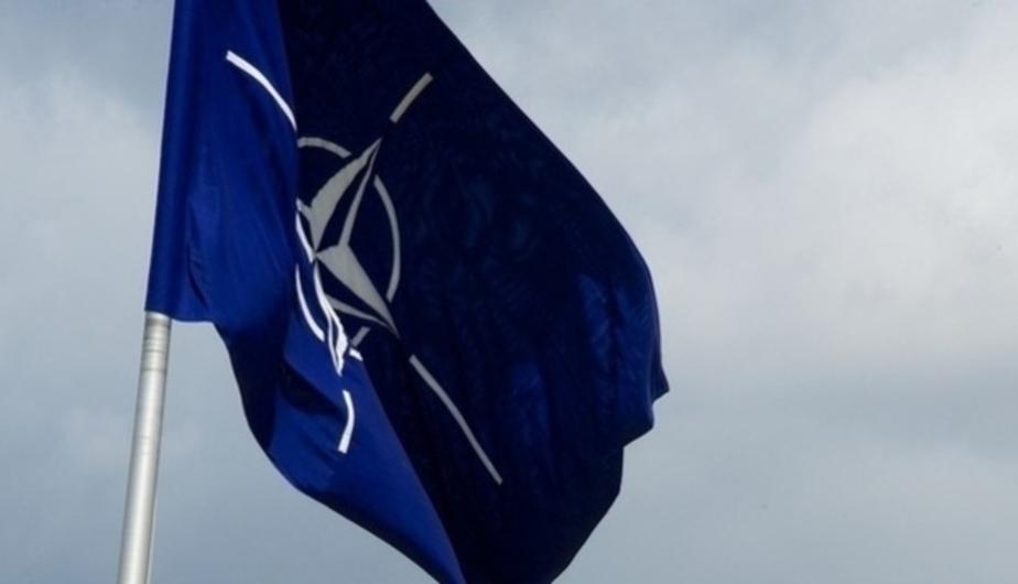 Фото: официальный сайт НАТО