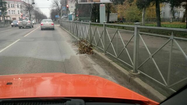 На ул. Карла Маркса коммунальщики разбросали собранные листья и уехали (видео)