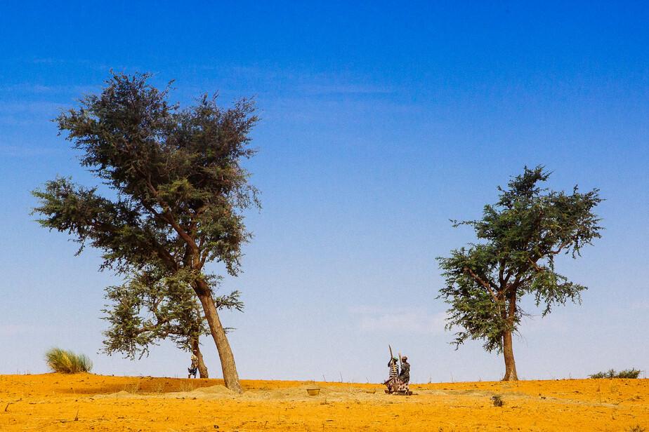 На машине из Калининграда в Африку — 8: как попасть в страну легендарных людей-птиц