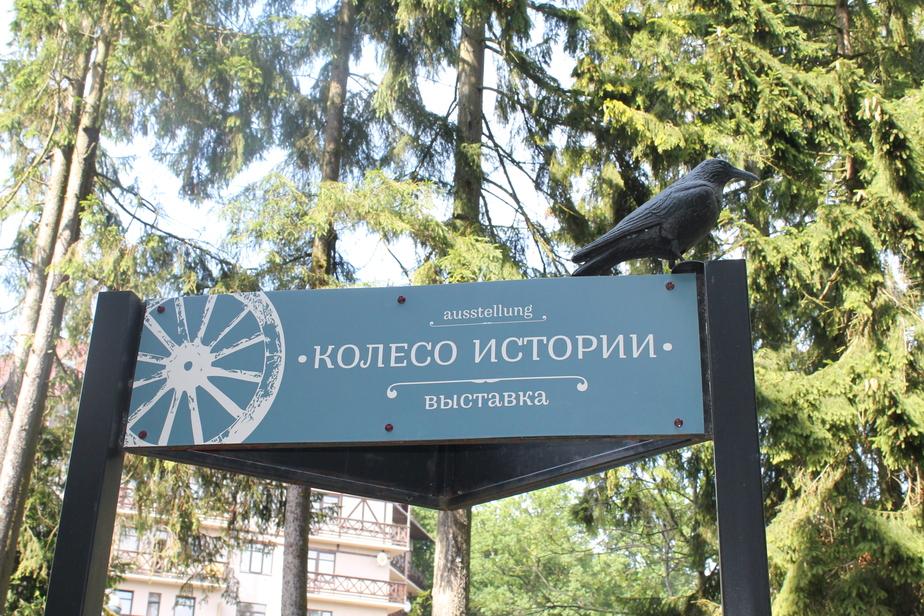 Фото: Наталья Макарова