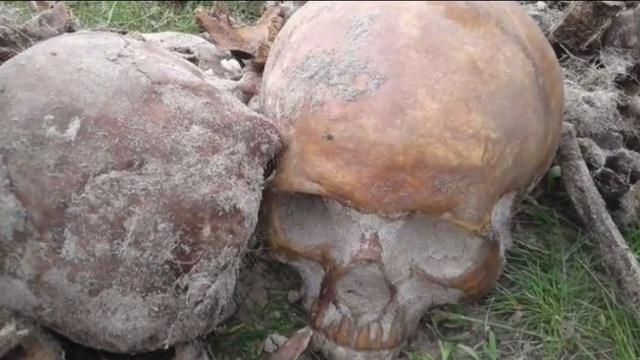 В Польше разграбили братскую могилу погибших во Второй мировой