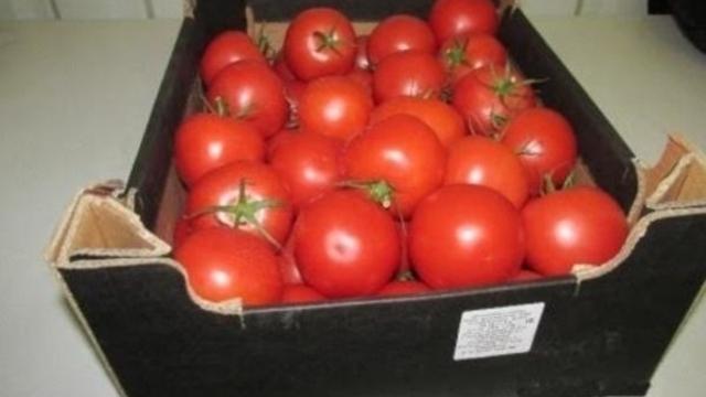 В Минсельхозе назвали условие возврата турецких помидоров на российский рынок