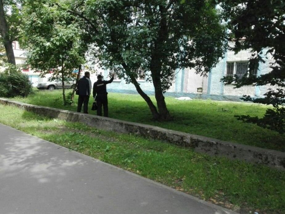 """Фото: сообщество """"ЯНТАРНЫЙ ДЛБ [18+]"""" / """"ВКонтакте"""""""