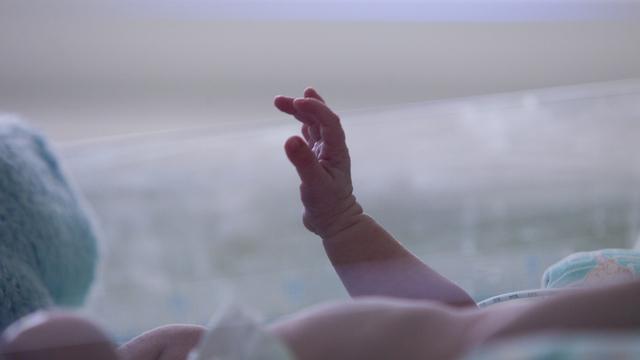 Полины и Максимы: как калининградцы называли родившихся в этом году детей
