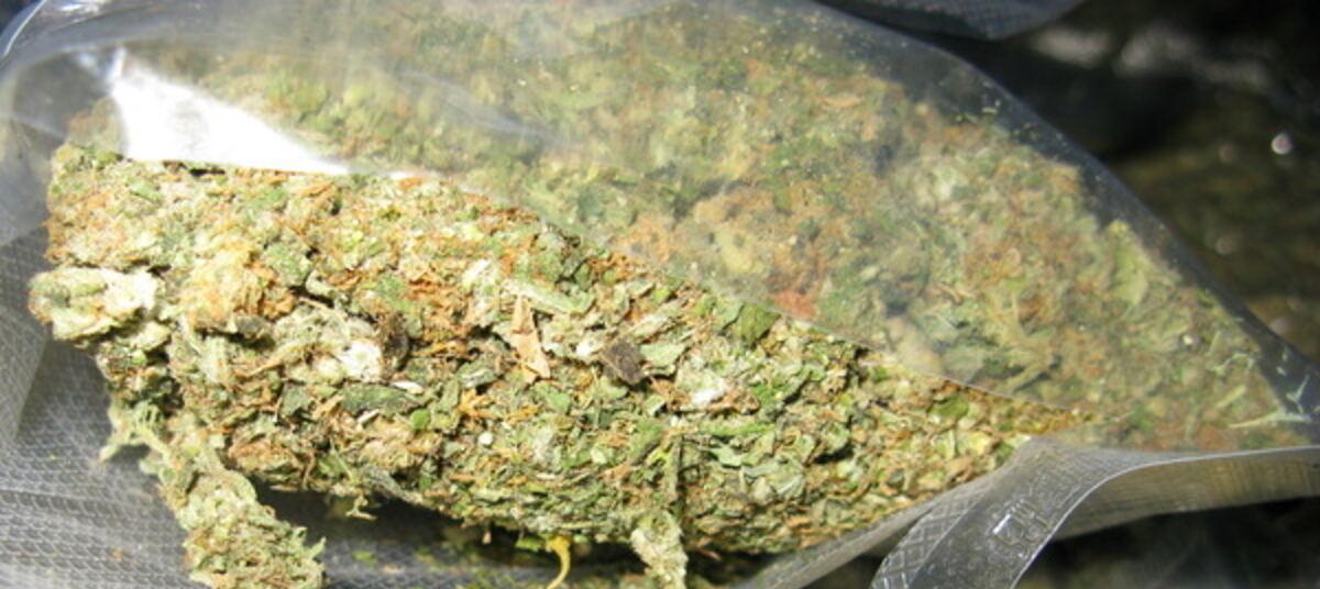 Срок за хранение и употребление марихуаны россия сколько марихуана в москве