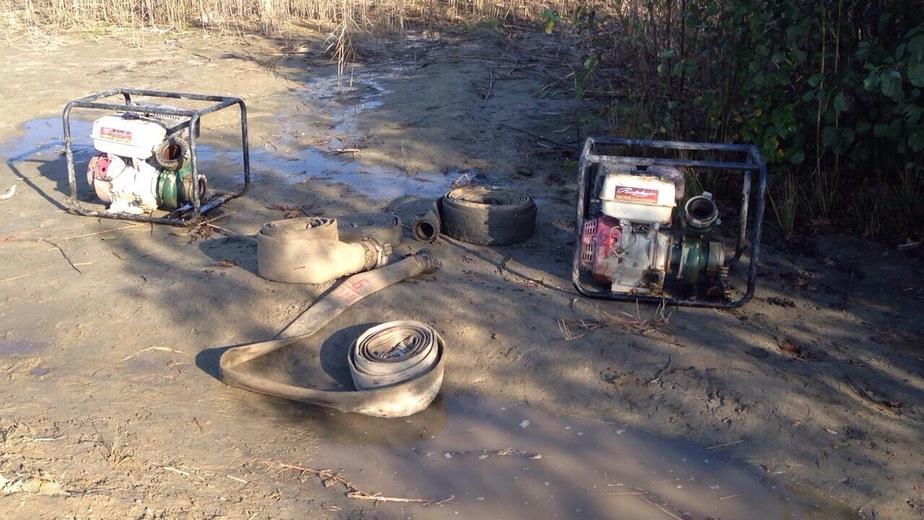 В 2017 году полиция Калининградской области задержала 696 чёрных копателей янтаря