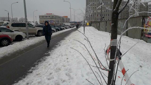 Убийство на Челнокова: следствие исключило версию попытки ограбления