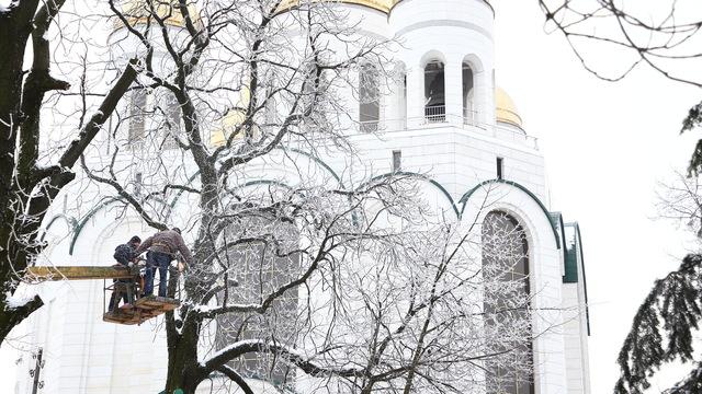 В Калининграде у храма на пл. Победы пилят деревья