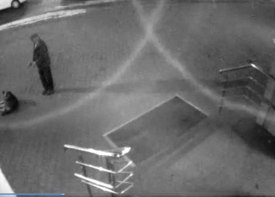 Фото: кадр из видеозаписи камеры наблюдения