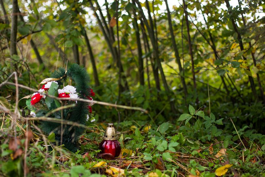 """Место, где нашли тело 21-летнего Дмитрия Шаховского / Архив """"Клопс"""""""