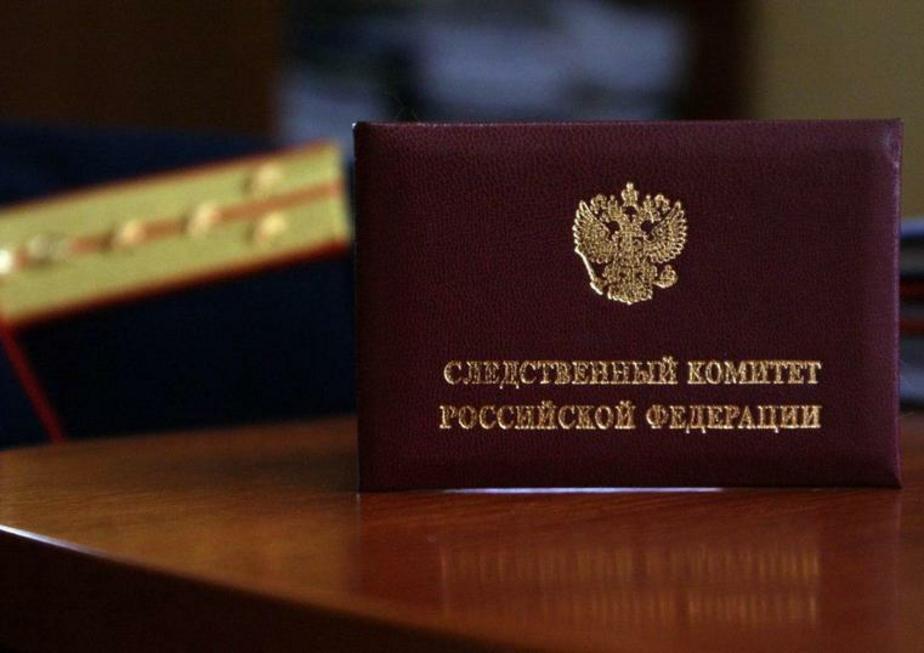 В Москве расследуют дело о смерти трёхлетней девочки, которая скончалась на прогулке в детском саду