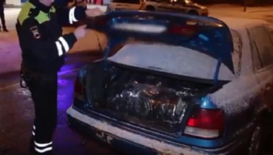 Полицейские задержали калининградца, перевозившего в автомобиле 25 килограммов марихуаны (видео)