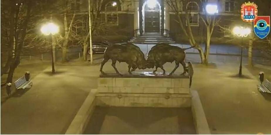 Фото: кадр из записи камер видеонаблюдения