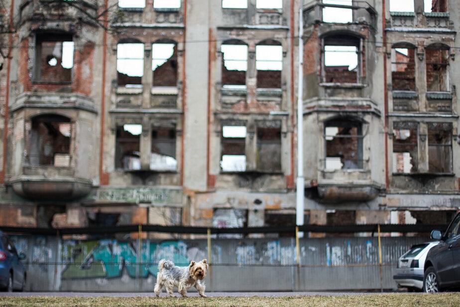 Перекрытые выезды и кран над головой: жители дома рядом с Кройц-аптекой жалуются на неудобства из-за её реконструкции