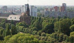Чего хочет Калининград: итоги