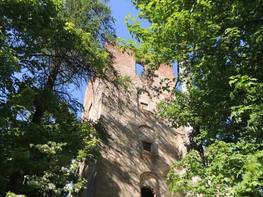 Калининградские поэты очистили руины кирхи XVIII века от мусора под чтение стихов (фото)