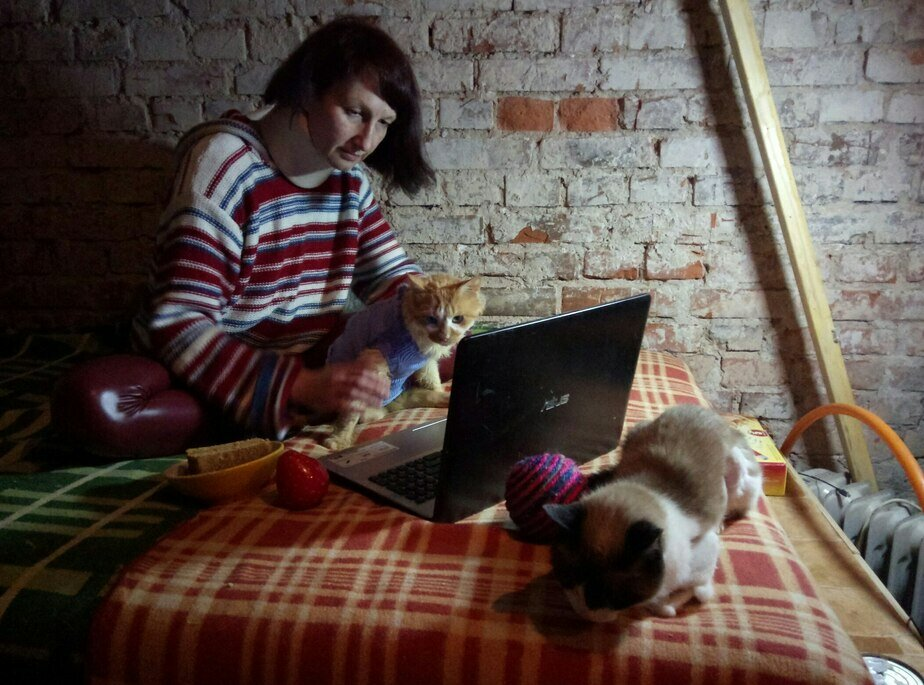 Калининградка продала квартиру, чтобы открыть хоспис для кошек