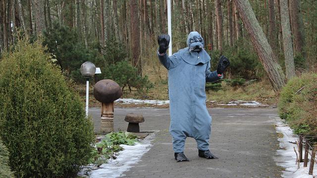 На Куршской косе отпраздновали День тюленя