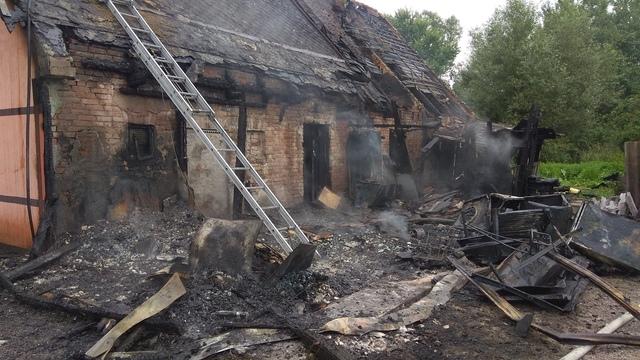При пожаре в приюте для бездомных животных под Калининградом погибли собаки и кошки