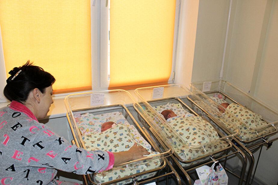 В калининградском перинатальном центре родилась первая за два года тройня