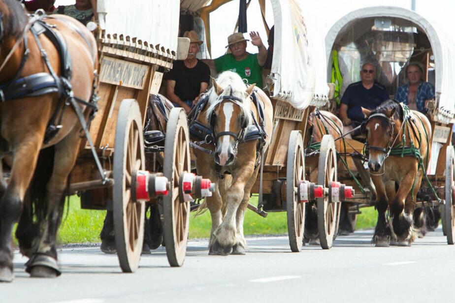 В Калининграде немецкая конная процессия стала причиной двухкилометровой пробки (видео)