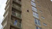 Енот-экстремал выжил после падения с высоты с девятого этажа (видео)