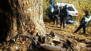 В Багратионовском районе Аudi врезался в дерево, водитель погиб (фото)