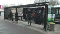 В Калининграде остановку у Центрального рынка превратили в торговую палатку (фото)