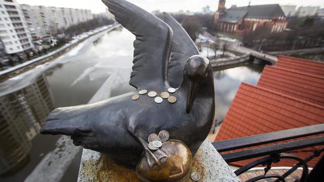 Что потереть и куда кинуть монетку: счастливые памятники Калининграда и области