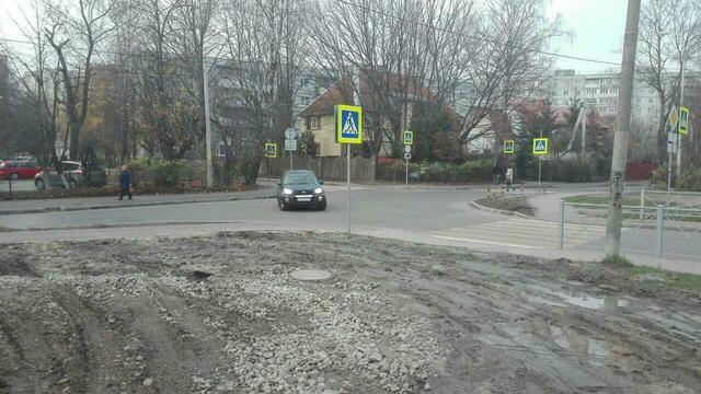 Сам себе гаишник: на ул. Нарвской закрыли популярный пешеходный переход