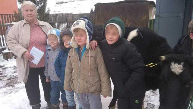 """""""Гречка будет с молоком"""": Дед Мороз подарил калининградской многодетной семье корову и сено"""