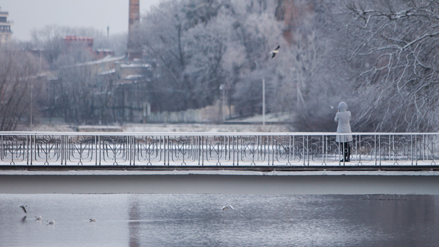 Калининградские синоптики рассказали о погоде на рабочую неделю