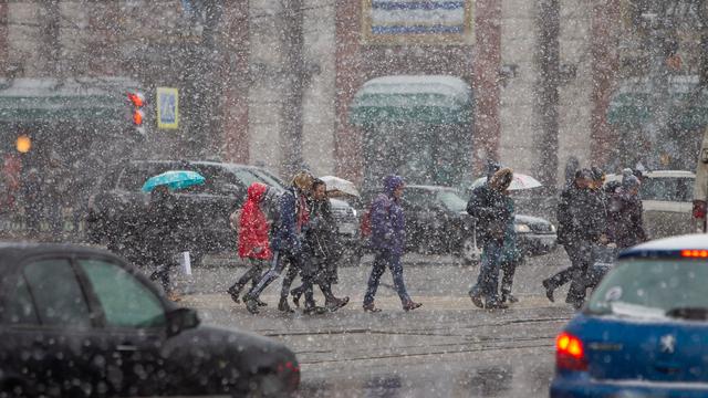 Калининградцев предупредили о порывах ветра до 20 м/с и сильном мокром снеге