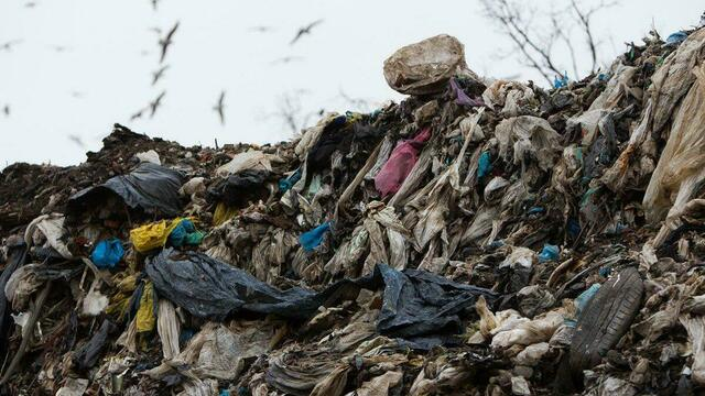 Вытряхивали отходы на улицу: как бунтовали калининградские мусороперевозчики, оставшиеся без контрактов