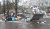 Полчаса ожиданий на телефоне: как мы пытались пожаловаться на переполненные мусорки
