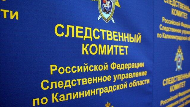СКР начал проверку после ДТП с перевозившим детей микроавтобусом под Черняховском