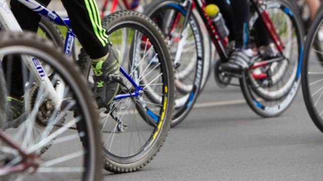 """Проект велодорожки в нацпарке """"Куршская коса"""" прошёл госэкспертизу"""