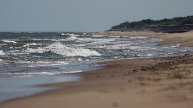 Цветущие водоросли и химическое оружие: учёные назвали две угрозы для Балтийского моря