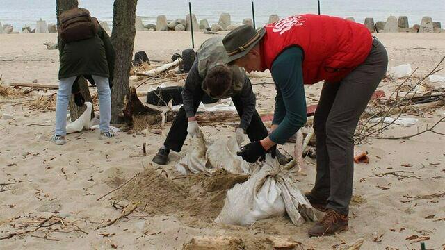 На Куршской косе волонтёры укрепили авандюну с помошью 600 щитов