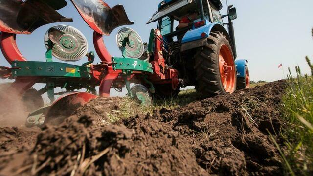 Российские власти предложили изымать земельные участки за мусор и нескошенную траву