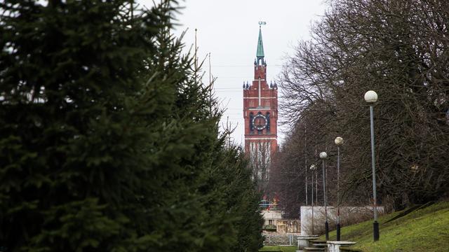 В Калининграде открылся приём заявок на фестиваль независимых музыкантов
