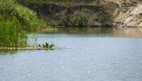 Роспотребнадзор запретил купаться в реке Тыльжа в Советске