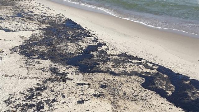 На Балткосе очистили около 800 метров берега от нефтепродуктов, разлившихся из танкера 17 июля