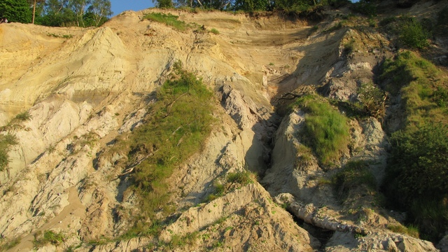 В Светлогорске покажут кости доисторических животных и научат искать окаменелости
